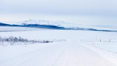 January on the Elliot Highway (musubk) Tags: road winter snow alaska highway ak elliot elliothighway