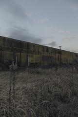 Moroyama#2 (Jancker_G) Tags: abandoned japan 35mm eos saitama simple desolate 6d desolated 24105mm 工場 eos6d
