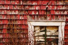 battened down (jtr27) Tags: red house abandoned rural entropy decay sony shingles insulation ii adapter di wabisabi alpha tamron f28 abandonment xr ld ilc csc nex batten ilce 1750mm mirrorless battened emount nex6 jtr27 laea2 dsc05450e