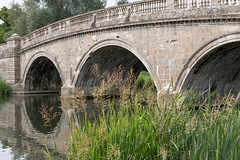 Bridge at Blenheim Palace. (mattjevans_photo) Tags: bridge water reeds reflection blenheim palace uk england trees 500px