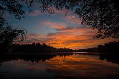 Durham Lake POV 2 - 082816-063250 (Glenn Anderson.) Tags: dawn morning sunrise down solor tree lake pond water reflection ripples nature color sun park nikon tamron outdoor sky cloud serene field landscape