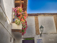 Spain May-June 2016-685_HDR.jpg (bruce.lande) Tags: barcelona cathedral cava church cordoba flamenco friends granda history madrid mosque seville sitges spain vacation vowrenewal wine