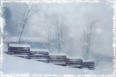 Winter in the Country (Javcon117*) Tags: winter javcon117 frostphotos snowing oldtime country frame fence trees house cottage wooden slats slatted