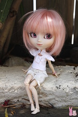 Holidays (Shamujinn) Tags: pullip doll poupe groove mymelody melody custom custo customise rewigged wig rose curly short hair cheveux azone pure neemo xs siamoise siamese shamujinn t summer vacances holidays shade tree ombre repos rest harmonie extrieur nature jardin