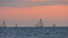 Vento que d na vela (Andr Felipe Carvalho) Tags: vento peroba icapu cear jangada pesca pescador nikon d7200 18300 alvorada sol nascente goldenhour