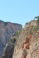 GEM_2972 (Gregg Montesi) Tags: zion national park angels landing