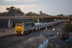 "2016-08-26 SSR C509-C504 East Greta Junction 4877 (Dean ""O305"" Jones) Tags: telarah newsouthwales australia au ssr southern shorthaul railroad c509 c504 4877 grain train maitland east greta junction fading light sunset hunter valley"