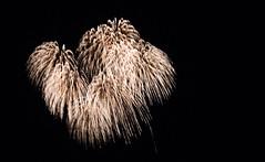 _MG_1324 (sdferrell) Tags: dmt fireworks ny