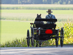 Amish Horse & Buggy (Brian E Kushner) Tags: amish mennonite horse buggy farm country countryroad road pennsylvania ©brianekushner nikon d810 nikond810 nikon70200mmf28 70200mm f28 nikor