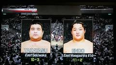 rising star (video clip) (Riex) Tags: sumo wrestling sports tokyo september 2016 japan japon video clip movie match tournament tournoi endo g9x