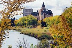 Autumn in Saskatoon (Gerry Marchand) Tags: olympus omd em5 deltabessboroughhotel saskatoon saskatchewan southsaskatchewanriver river autumn fall leaves canada