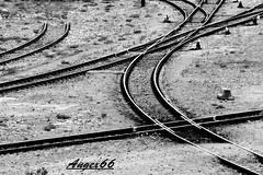 Intrecci (Alax66) Tags: ferrovia binari simmetrie bn