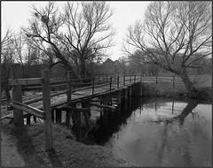 (Yuriy Sanin) Tags: kievrus ukraine yuriy sanin bridge tress river  ruins  mill 4x5 largeformat tachihara shanghai          coast blackandwhite bw bushes building