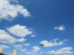 Plane approaching DFW for landing (halffullpl) Tags: pattylebedhessphotos pattylebedhessphotography canon powershot plane airplane aviation approaching descending dfw landing