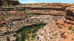 Big Spring Canyon Overlook (Anomieus) Tags: canyonlands desert utah nature landscape rock sky bigspringcanyonoverlook outdoor needles confluenceoverlooktrail neverstopexploring nationalpark canyonlandsnationalpark moab canyons mesas buttes coloradoriver greenriver natural canyon rockformation geology