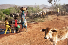 Maikal hills - Chhattisgarh - India (wietsej) Tags: maikal hills chhattisgarh india sonydslra700 sigma1224mmf4556exdgasphsm farming tribal rural bhoramdeo wietse jongsma kawardha