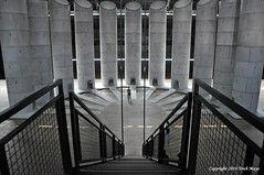 The View From The Top (Trish Mayo) Tags: parkavenuearmory art artinstallation tarynsimon anoccupationofloss stairs staircase noncoloursincolour