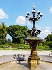 NYC Central Park 2014-8100394 (myobb (David Lopes)) Tags: calvertvaux centralpark em1 fredericklawolmsted manhattan nyc newyork newyorkcity omd olympus usa day green nature park summer