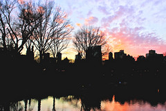 Sunset at Central Park. (Emma Choo) Tags: pink blue trees winter sunset shadow sky orange newyork black reflection water silhouette yellow contrast buildings soft purple centralpark outline tones emcphotography