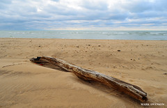 Driftwood (mswan777) Tags: sky lake beach nature clouds landscape sand nikon waves michigan dunes lakemichigan greatlakes