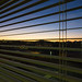 Hospital Room Sunrise (nosha) Tags: