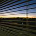 Hospital Room Sunrise (nosha) Tags: