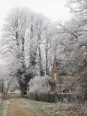 Hoarfrost (Nigel Musgrove-2.5 million views-thank you!) Tags: frost hoarfrost hoar downampney