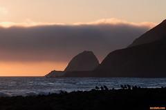 FogBank (mcshots) Tags: california winter sunset sky usa sun seagulls beach nature birds clouds reflections coast rocks stock socal mcshots venturacounty