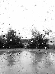 iPhone chronicles (PranamGurung) Tags: water rain drops gurung iphone pranam