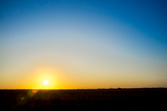 the scenery on my drive home (Real Cowboys Drive Cadillacs) Tags: road blue sunset sky orange sun sunlight tree field silhouette yellow clouds landscape cowboy texas unitedstates farm country cadillac clear pasture sunburst baycity
