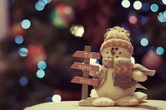 Day 354 / 366 To North Pole (Explored) (Pat Kelleher) Tags: christmas winter wonder happy snowman bokeh pat frosty explore yule merry wonderland yuletide northpole kelleher explored bokehilicious patkelleher tonorthpole