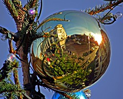 Reflections of Christmas in Bedford (Rob Felton) Tags: christmas street light sun reflection tree bedford bedfordshire felton bauble robertfelton