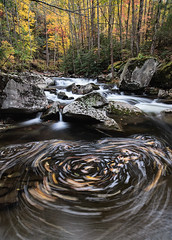 Forest Stream Whirlpool, Smoky Mountains (35mmCafe) Tags: autumn usa fall nature water america creek river scenery stream seasons unitedstates tennessee smokies tremont greatsmokymountainsnationalpark 06000000 06007000 06002000 06002002
