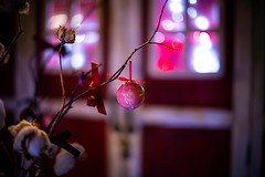Christmas Ball (moaan) Tags: christmas window digital 50mm mood dof bokeh f14 illuminations atmosphere celebration ornament decorating uta