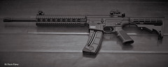S&W M&P 15-22 (Dustin D'Amour) Tags: firearm canon30d canonef50mmf18ii mp1522lr 811033