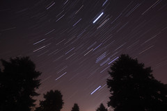 Geminid Star Trail (Radical Retinoscopy) Tags: winter sky tree pine night canon shower photography eos star twins long exposure astro trail astrophotography orion astronomy jupiter taurus gemini meteor castor astrophoto pollux startrail earthandsky earthandspace t2i