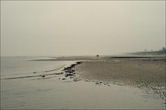 schn grau (liebeslakritze) Tags: mist fog grey nebel wind grau balticsea lowtide ostsee spaziergang dunst heiligabend seasisde atthesea offshorewind afrternoonatthebeach wonderfullgrey ablandigerwind