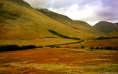 (Axxolotl) Tags: bridge autumn mountains fall nature landscape scotland highlands herbst natur scottish viaduct hills berge valley brücke landschaft tal schottland tyndrum auch hügel bridgeoforchy viadukt schottisch westhighlandline beinndorain heidelandschaft alltkinglass