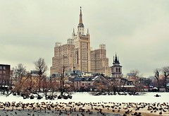 5  (Serge 585) Tags: city winter naturaleza snow tower nature birds animal animals fauna architecture zoo natural moscow january animales acqua architettura                 me2youphotographylevel1