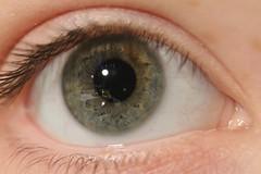 My Eye (TheWantedPhotography) Tags: blue brown green eye canon eos grey grau grn braun blau auge 650d