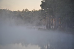 Duck Pond - Eglin Range Complex, Florida (fisherbray) Tags: usa mist lake water fog nikon wasser nebel unitedstates florida airforce usaf duckpond eglin eglinafb okaloosacounty d5000 fisherbray eglinrangecomplex