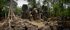Lost City (davidkoiter) Tags: blue sky panorama cloud david tree stone wall canon court butterfly temple eos ancient ruins cambodia pano 7d april vista l series desaturated angkor wat f4 hdr 1740 2012 f4l koiter davidkoiter