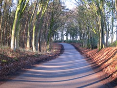 The long and winding road (ambo333) Tags: uk england cumbria brampton hayton