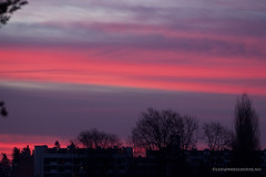 Burning (Leifskandsen) Tags: camera red sky urban nature sunshine norway sunrise canon living burn suburbs scandinavia bekkestua leifskandsen skandsenimages