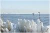 vuurtoren op Marken (20D33730) (Hetwie) Tags: ice vuurtoren marken noordholland ijs markermeer kruiendijs hetpaardvanmarken