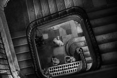 En bas (krystinemoessner) Tags: bw bn sw nb escalier people personnes muse dijon monochrome krystine moessner taek
