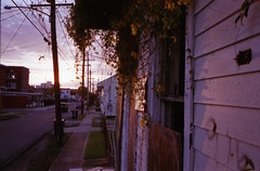 Summer Sunset (Sean M. O'Grady) Tags: contax neworleans louisiana house manvsnature urban urbanjungle crust blight
