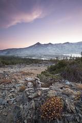 Fire Danger (Neuronico) Tags: lakealoha california sierra mountain hike camp brush bush tree nature water sky cloud suset blue hour