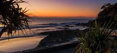 Froggys Beach (rod marshall) Tags: sunrise snapperrocks bestsunrise sunrisesnapperrocksbestsunrise dawn oceandawn