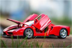 Enzo Ferrari - MM [Explored] (Nadine Rhéaume) Tags: tamronspaf60mmf2diiimacro toycar red sportcar enzo ferrari planestrainsandautomobiles macromondays